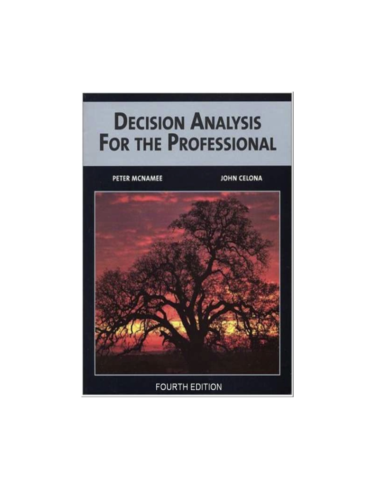 Download Decision Analysis For The Professional With